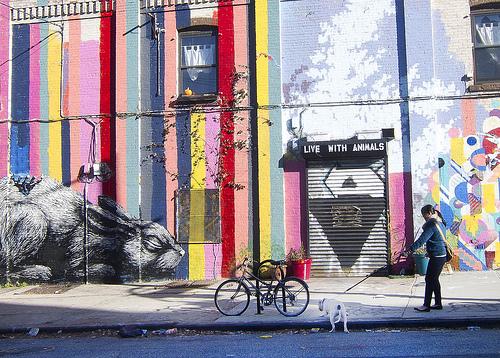 NovaYork4_Brooklyn